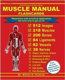 Muscle Manual Flashcards Nikita Vizniak