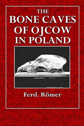 The Bone Caves of Ojcow in Poland Ferd. Römer