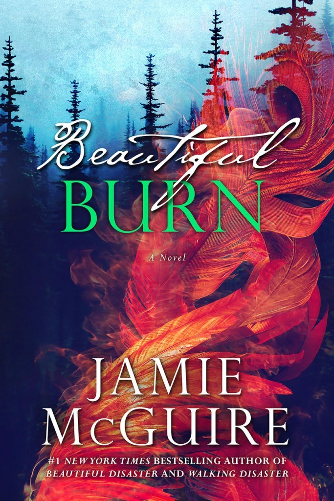 Beautiful Burn (The Maddox Brothers, #4)  by  Jamie McGuire