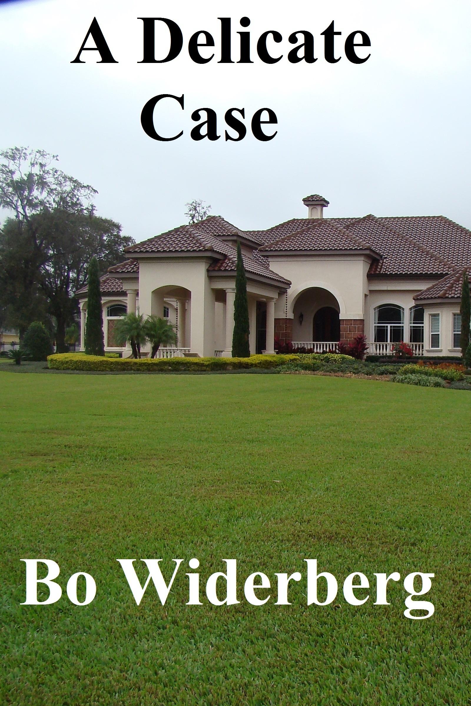 A Delicate Case  by  Bo Widerberg