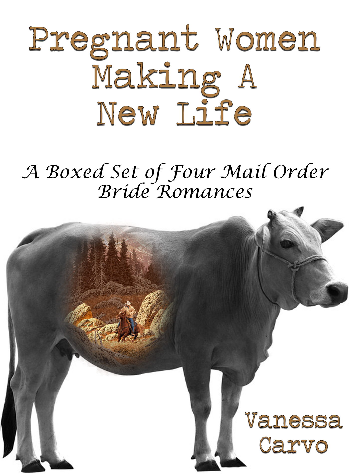 Pregnant Women Making A New Life: A Boxed Set of Four Mail Order Bride Romances  by  Vanessa Carvo