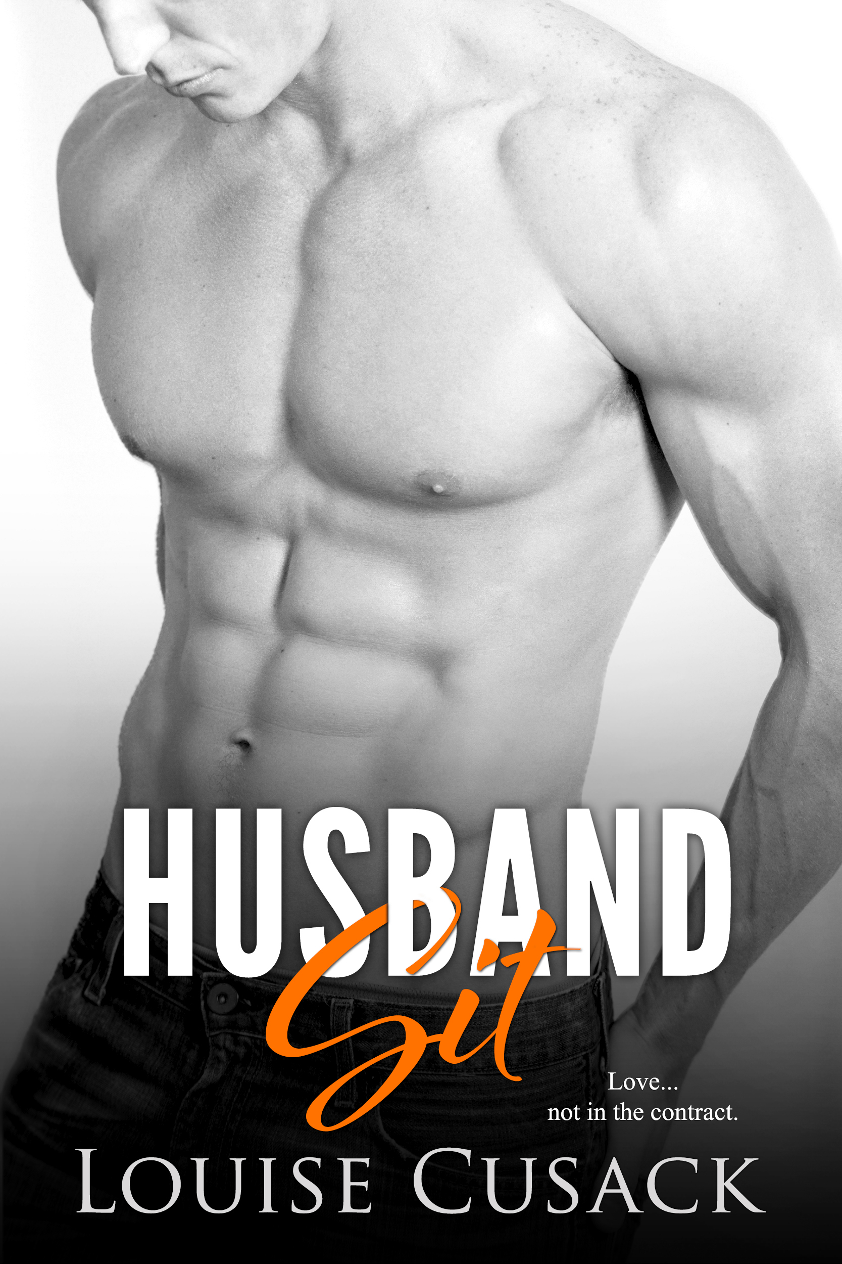 Husband Sit (Husband Series Book 1)  by  Louise Cusack