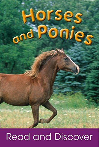 Horses and Ponies  by  Amos Janine