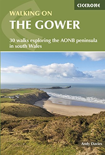 Walking on the Gower  by  Andrew Davies