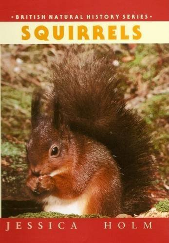 Squirrels Jessica Holm