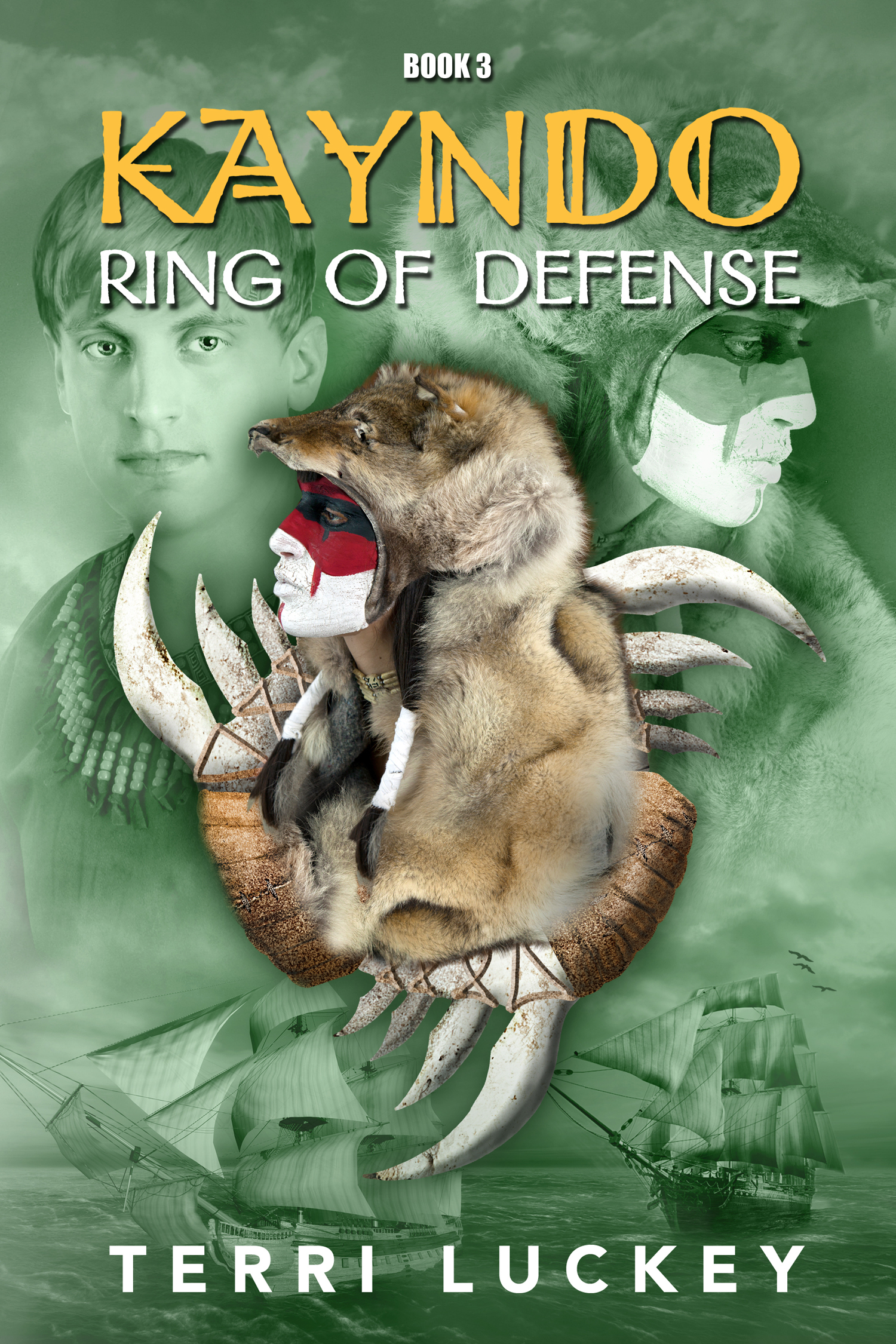 Ring of Defense (Kayndo #3)  by  Terri Luckey