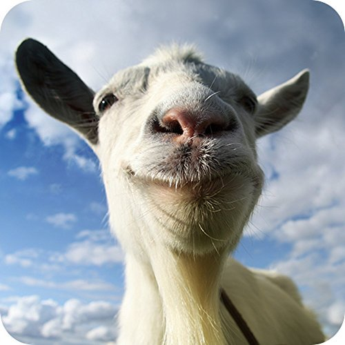 Goat Simulator  by  Coffee Stain Studios