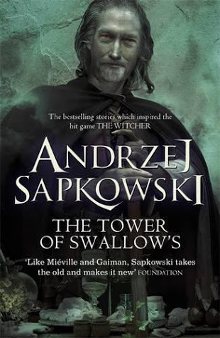 The Tower of Swallows (The Witcher, #6)  by  Andrzej Sapkowski