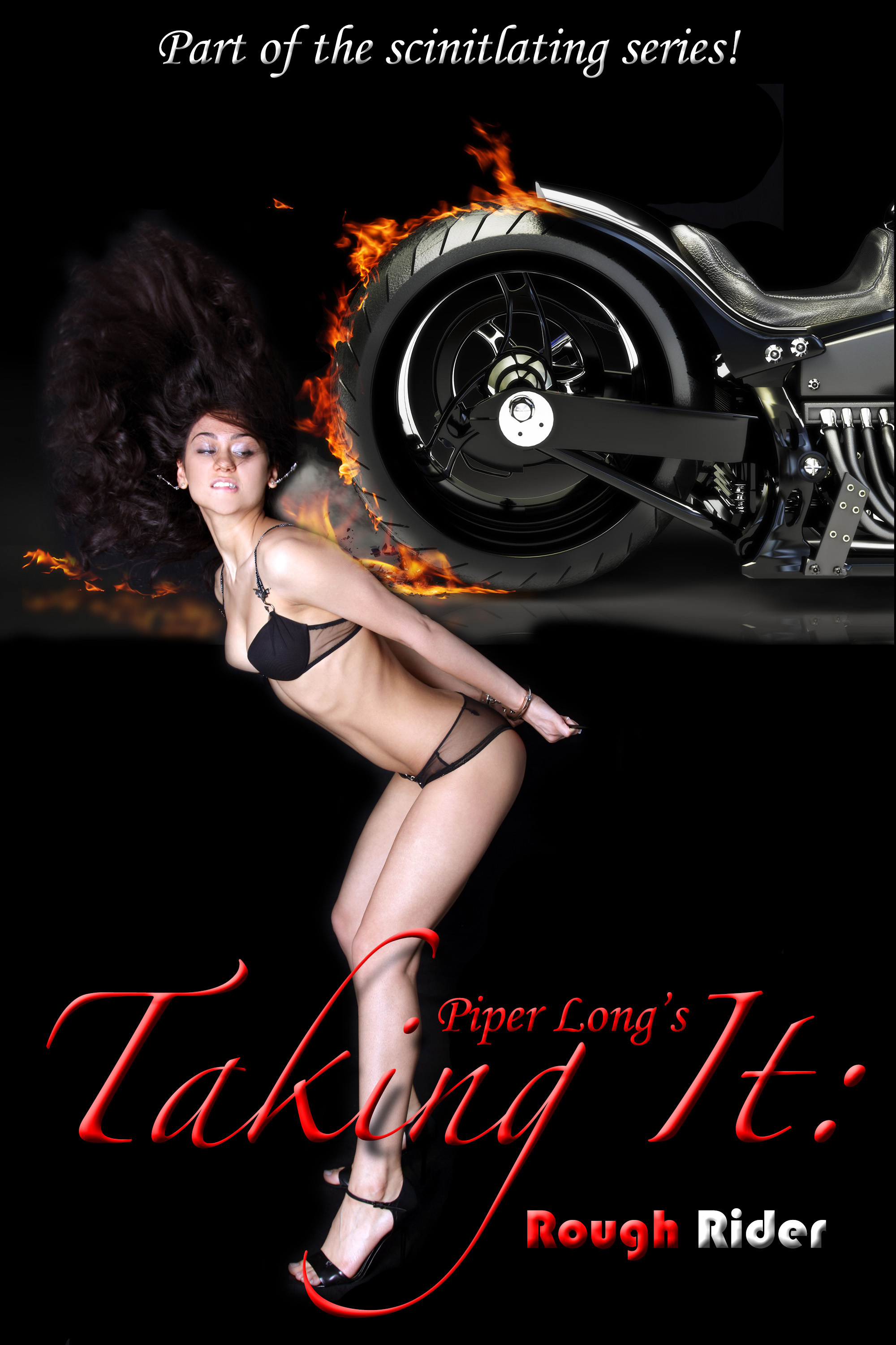 Taking It: Rough Rider  by  Piper Long