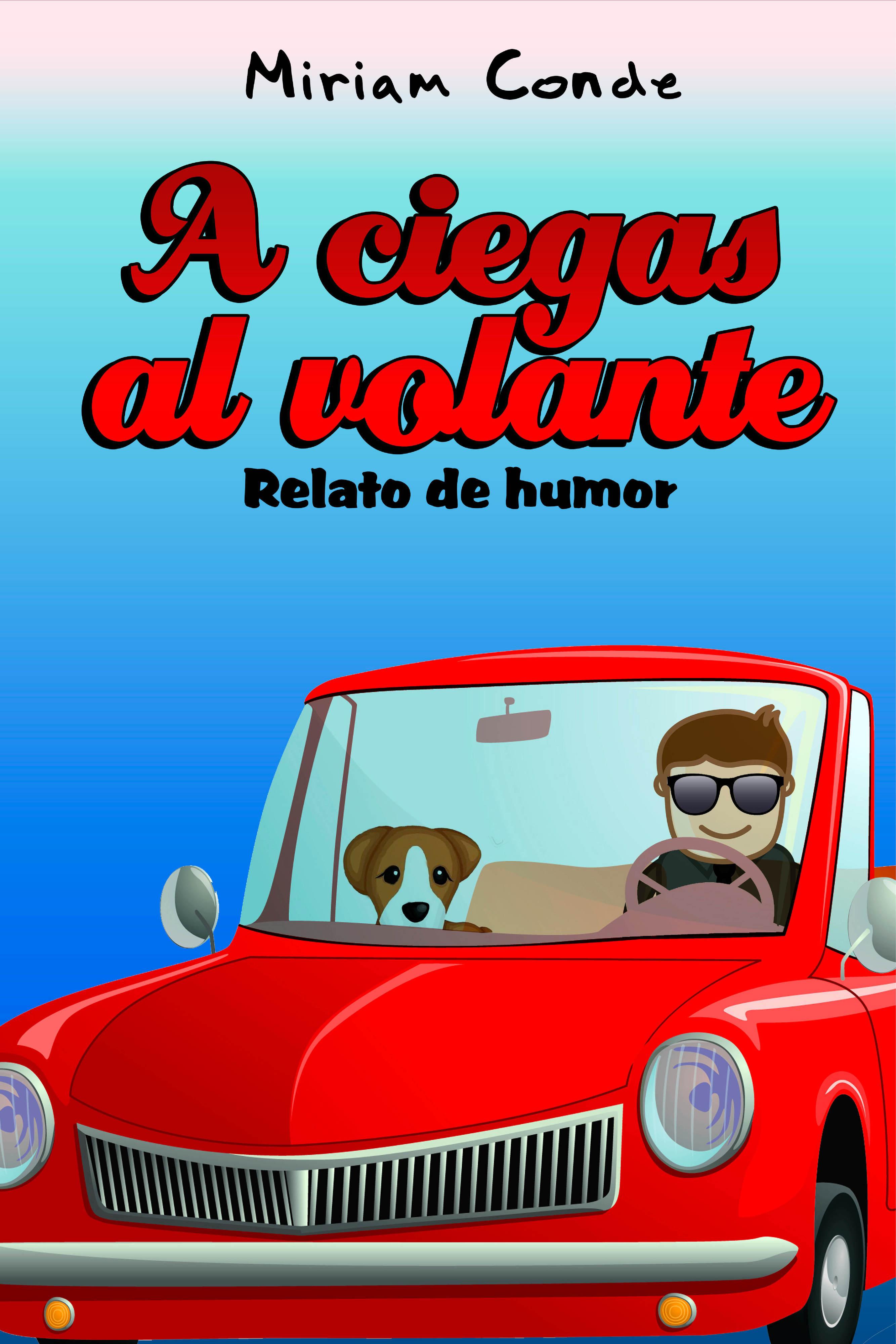 A ciegas al volante  by  Miriam Conde