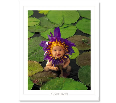 FLOWER BABY Pictures, Images and Photos