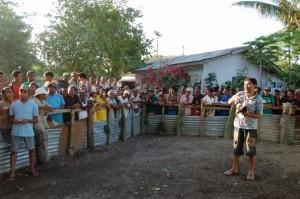 Cockfight, Baucau, East Timor.