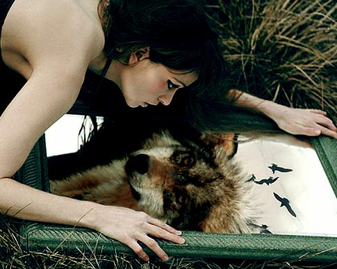 photo werewolf_zps5b3cd02a.png