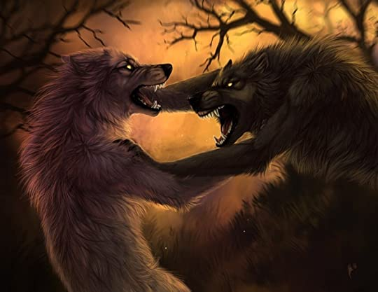 photo 505471__wolf-fight_p.jpg