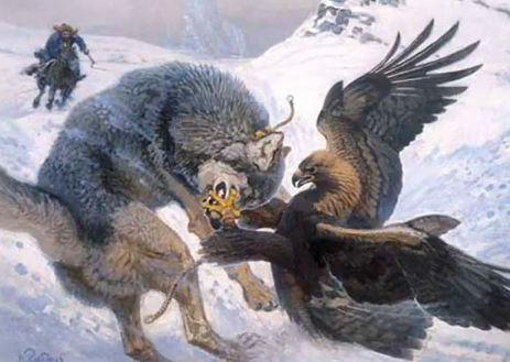Eagle and wolf photo i-211daf65d247675766395915a2e2ff1d-eagle-vs-wolf-painting-Dec-2010.jpg