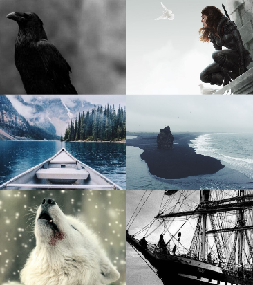photo six of crows collage.png