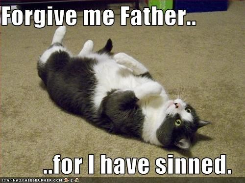 Forgive Me Father For I Have Sinned Cat Meme
